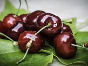 cherry-771503_1920.jpg
