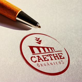 Logo_Mockup_CAETHE.png