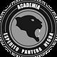academia pantera negra