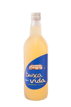 BUSCA_VIDA.png