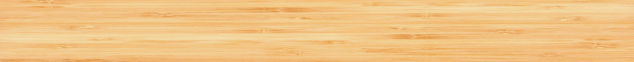 bamboo strip.png
