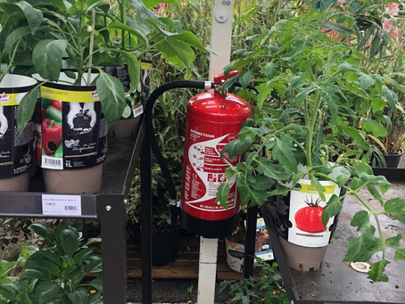 Vérification annuelle et contrôle sécurité incendie de jardineries en Nouvelle Aquitaine