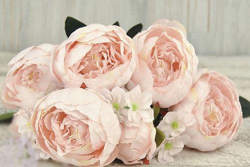 Пионы светло-розовые