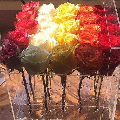 Разноцветные розы в акриловой коробке