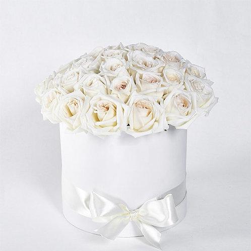 Коробка из белых роз 25шт.