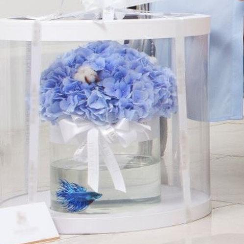 Гортензия с рыбкой в  коробке-аквариуме