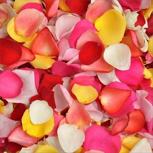 Лепестки роз разноцветного цвета, 1 пакет-12л