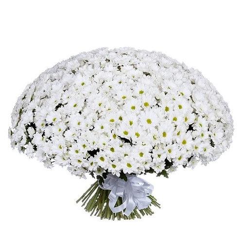 Букет из хризантемы (99 шт.)