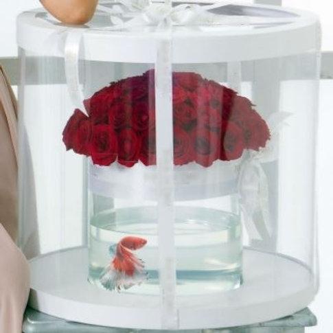 Розы с рыбкой в коробке-аквариуме