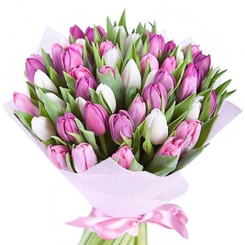 Букет из тюльпанов (49 шт.)