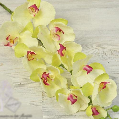 Орхидеи силиконовые