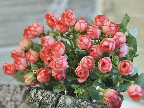 Кустик мелких роз