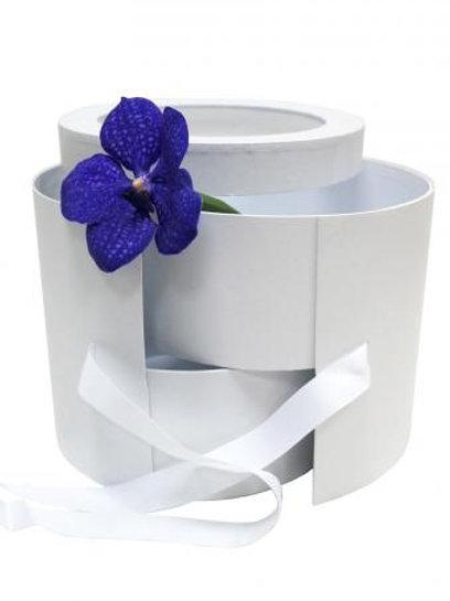 Подарочная коробка (Белая)