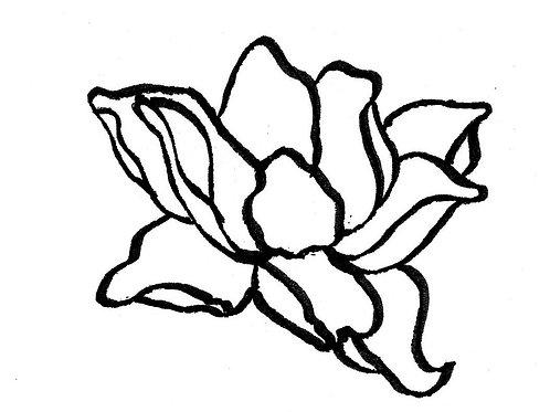 Magnificent Magnolia LG Pattern
