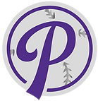 paisleyspitching_icon-01-01.png
