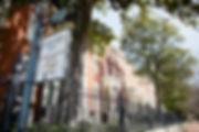 LindenRow1.jpg