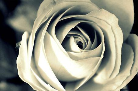 Inner Beauty <3