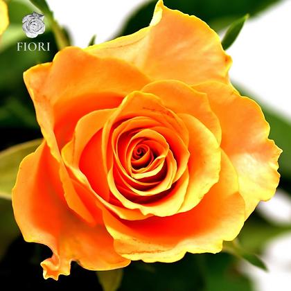 Ramo de rosas Confianza