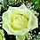 Thumbnail: Ramo de rosas Frescura