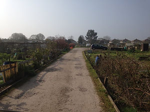 allotment drive.jpg