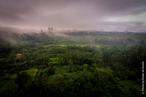 © Foto: Ehder de Souza
