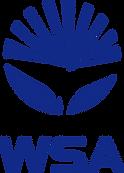 水泳、個別指導、トップスイマー、WSA、型、最新、東京、埼玉
