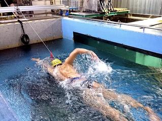 泳ぎの抵抗速度2乗説 筑波大が否定