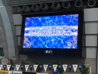 世界選手権日本代表選考会 結果報告 動画あり