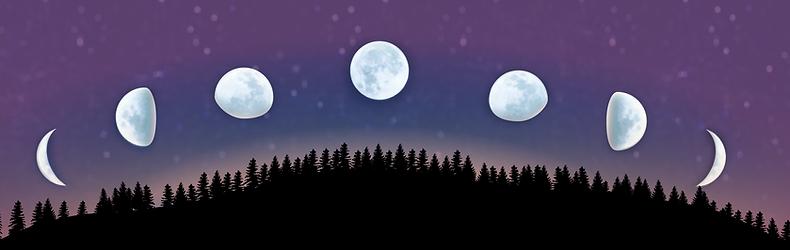 Judith Laxer logo moons