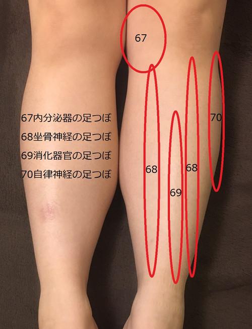 足首から膝の足つぼ