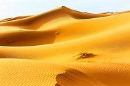 13-sahara-desert-sunrise.jpg