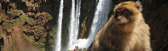 Ouzoud-Waterfalls-Marrakech.jpg