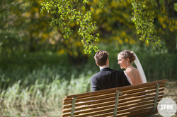 Bryllups pause