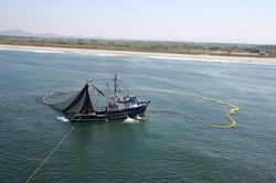 barco sardinero en lance