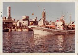 barco pesquero furuno