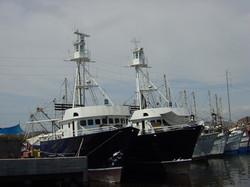 barcos atuneros chicos nuevos 05