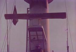 radar de pajaros 2
