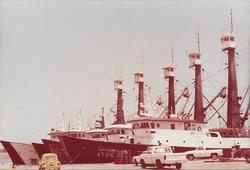 flota atunera en muelle 2