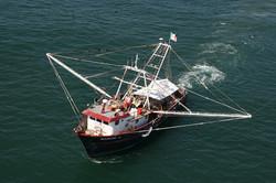 barco camaronero navegando