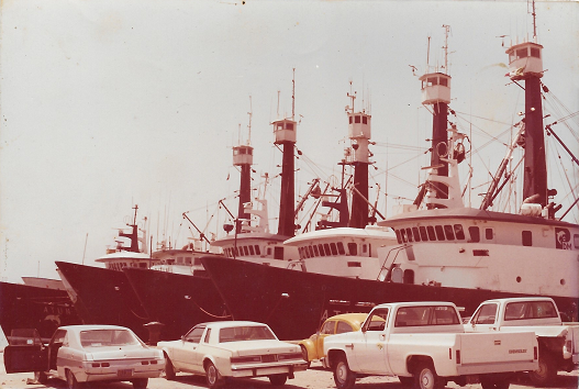 flota atunera en muelle