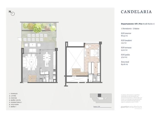 Impreso_Plantas_Candelaria_PTO_d103_2021.png