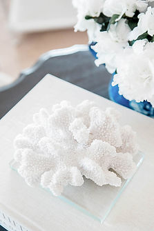Photo of coral and flowers on a table