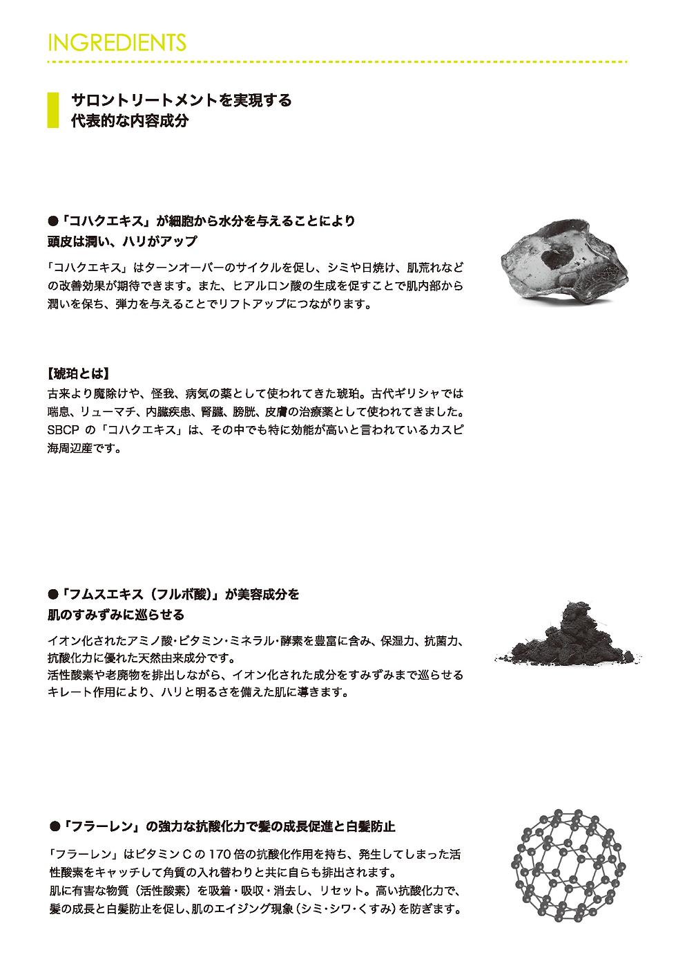 200530hairmask_ページ_06.png