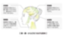 スクリーンショット 2020-06-04 02.20.09.png
