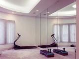 home-gym-mirror-crop.jpg