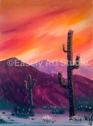 """""""Tucson Desert"""""""
