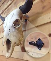 Buffalo skull hanger