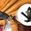 Thumbnail: The Bambi Bracket