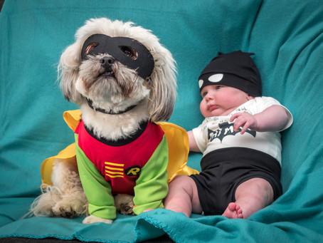 Robin's dog blog - part 14