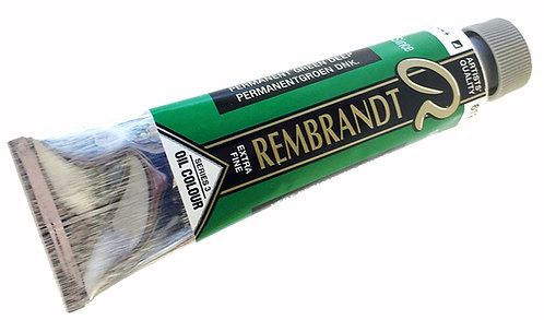 Huile Rembrandt Vert Permanent Foncé 619 S3